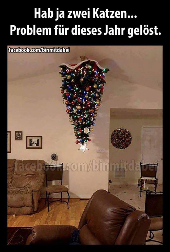 tierische weihnachten so gelingt das fest lucie nala. Black Bedroom Furniture Sets. Home Design Ideas
